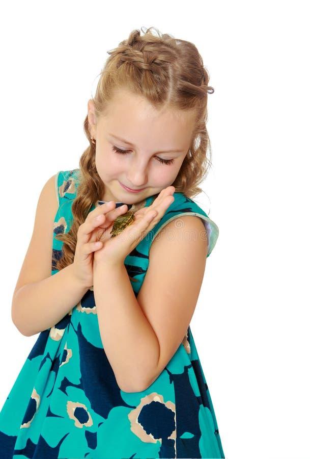 Tenuta della bambina in mani una piccola tartaruga fotografie stock