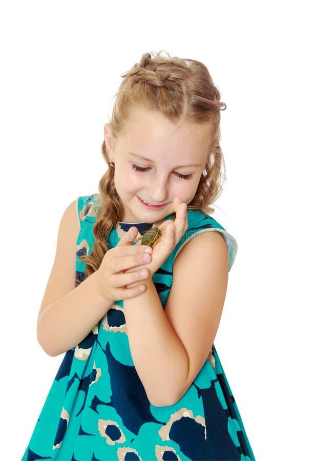 Tenuta della bambina in mani una piccola tartaruga fotografia stock