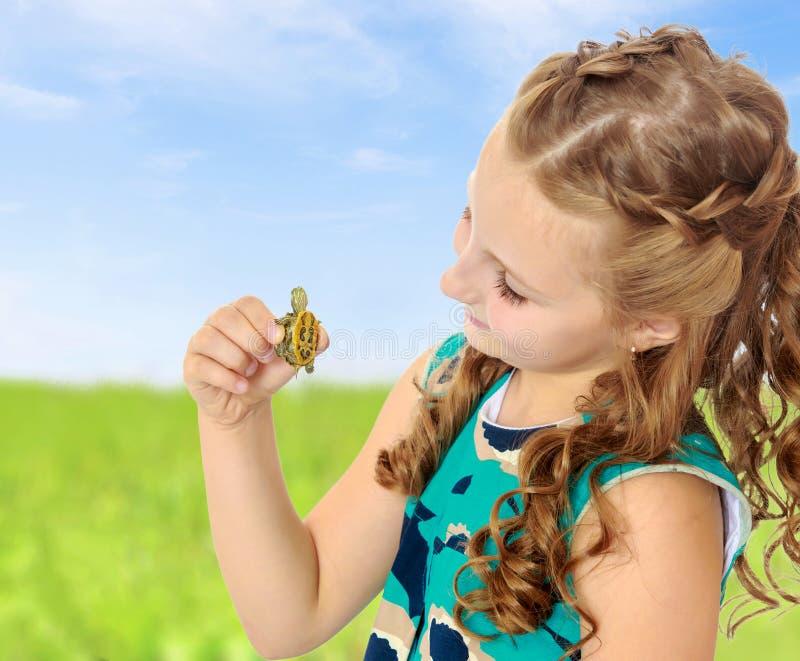 Tenuta della bambina in mani una piccola tartaruga immagine stock