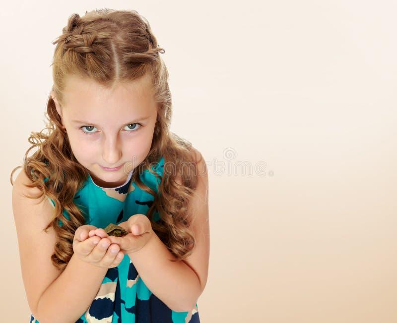 Tenuta della bambina in mani una piccola tartaruga fotografia stock libera da diritti