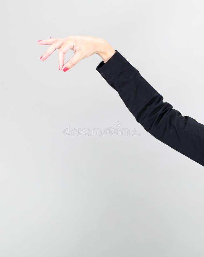 Tenuta della mano delle donne fotografia stock
