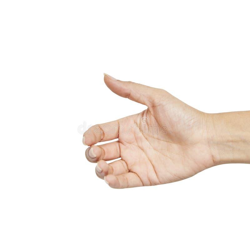 Tenuta femminile vuota della mano della donna immagine stock