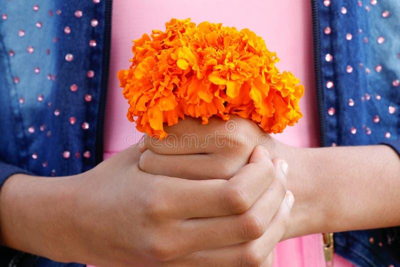 Tenuta gialla del mazzo dei fiori del tagete dalla ragazza sulle sue mani immagine stock libera da diritti