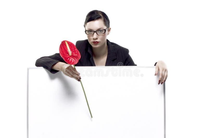 Tenuta scheda in bianco e del fiore rosso fotografie stock libere da diritti