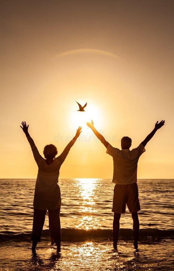 Tenuta senior delle coppie che celebra la spiaggia tropicale di tramonto immagine stock