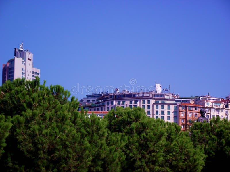 Tepebasi, Beyoglu Istanbul from Kasimpasa. Beyoglu, Tepebasi buildings above the pine trees landscape photo royalty free stock photos