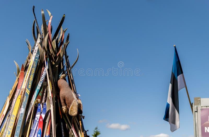 Tepee сделанный от лыж outdoors и флага Эстонии стоковые изображения rf