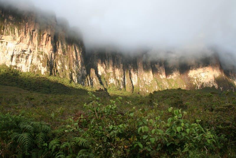 Tepui de Roraima foto de archivo libre de regalías