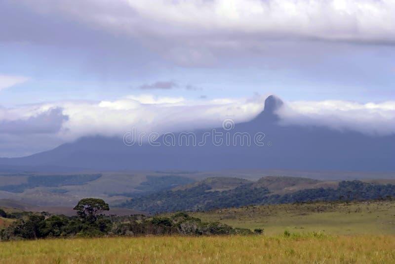 Tepuy a drapé en nuages, La Gran Sabana, Venezuela image libre de droits