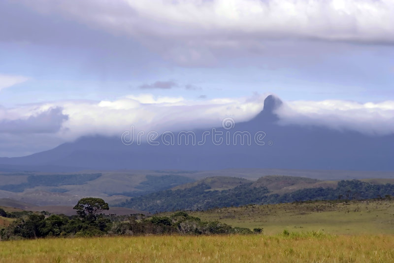 Tepuy draped in Clouds, La Gran Sabana, Venezuela royalty free stock image