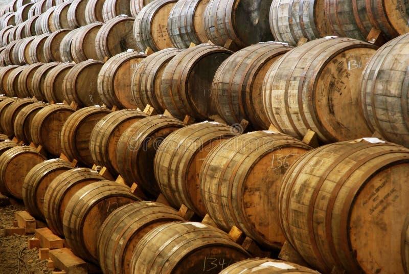 Tequila για να επεξεργαστεί ώριμα 3 στοκ φωτογραφίες με δικαίωμα ελεύθερης χρήσης