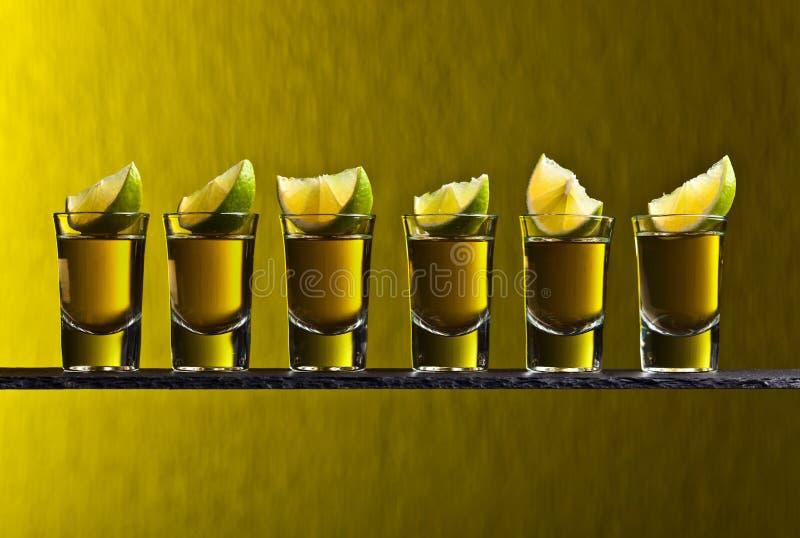 Tequila и известка стоковые изображения rf