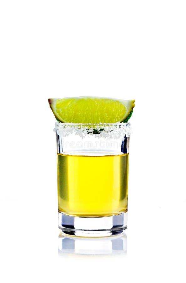 tequila съемки стоковое фото
