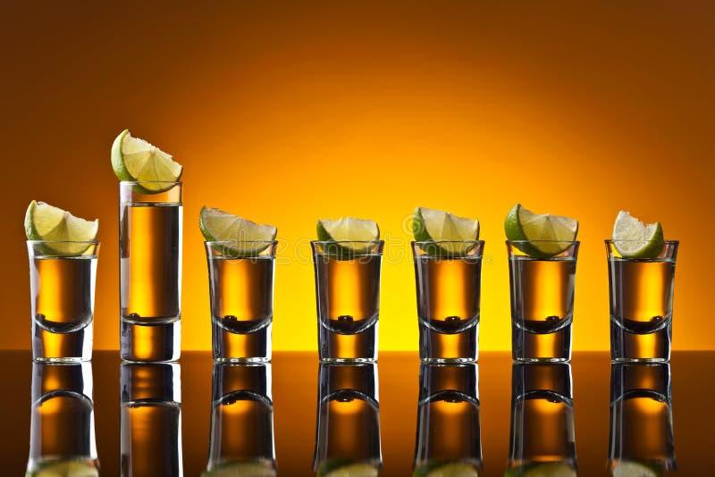 Tequila с известкой стоковые изображения rf