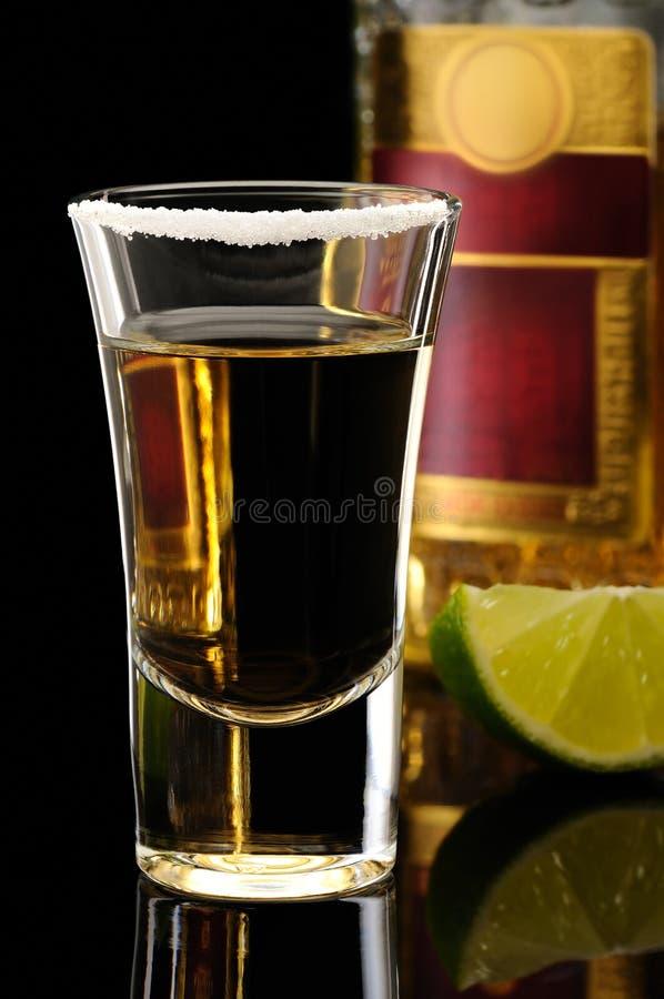 tequila στοκ φωτογραφία με δικαίωμα ελεύθερης χρήσης