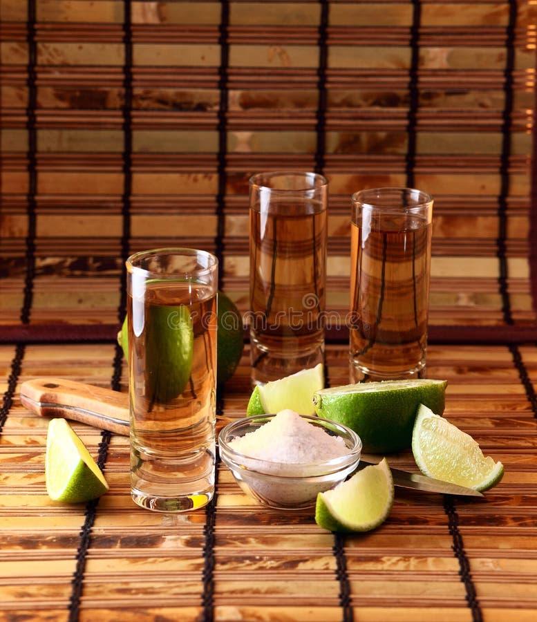 Tequila. imagens de stock