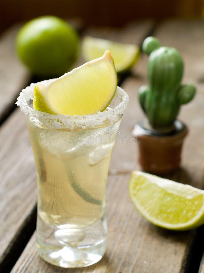 Free Tequila Stock Photo - 30448250