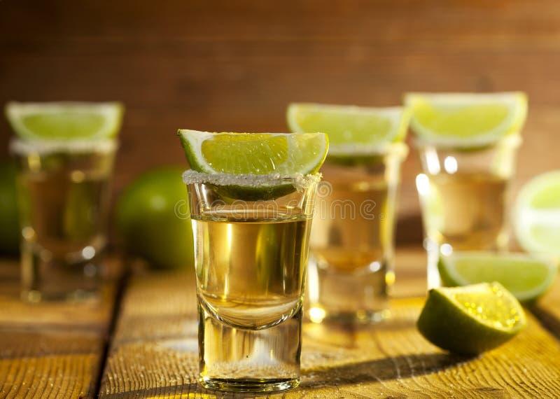 tequila obraz stock