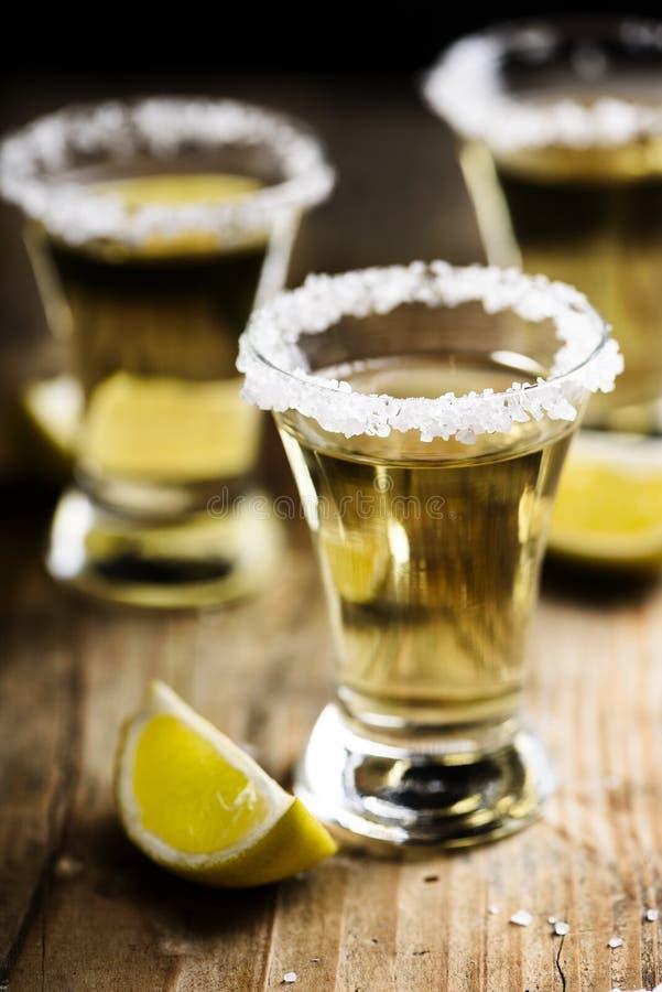 tequila стоковые фото