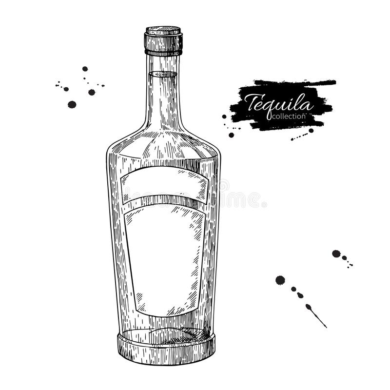 Tequila bottle drawing. Vodka, cocktail, alcohol drink vector il stock illustration