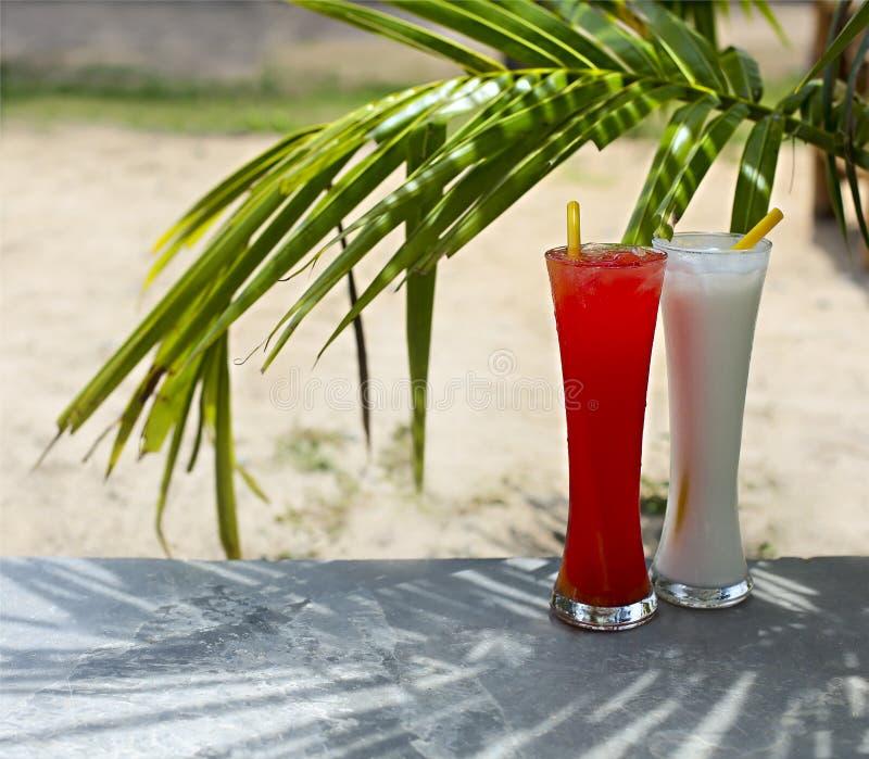 Tequila pina i wschód słońca colada koktajle pod palmą fotografia stock