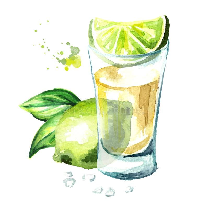 Tequila shot with fresh green lime and salt. Hand drawn watercolor illustration isolated on white background. Tequila shot with fresh green lime and salt. Hand royalty free illustration