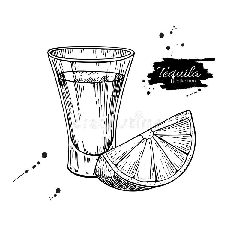 Tequila shot glass with lime. Mexican alcohol drink vector drawing. royalty free illustration