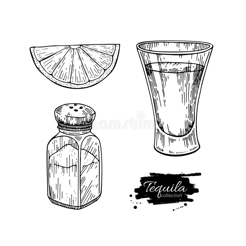 Tequila shot glass with lime and salt shaker. Mexican alcohol drink vector drawing. vector illustration