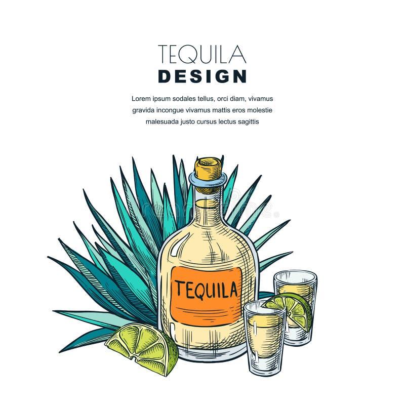 Tequila sketch vector illustration. Bar menu, label, package design. Bottle, shot glass, agave isolated on white stock illustration