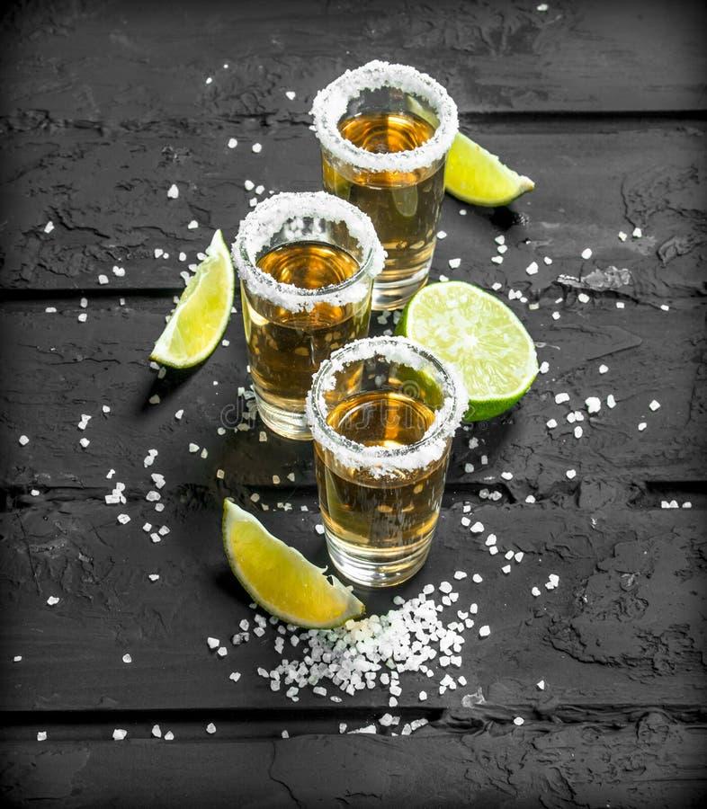 Tequilaen i ett skjutit exponeringsglas med saltar och skivor av ny limefrukt royaltyfri fotografi