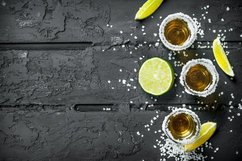 Tequilaen i ett skjutit exponeringsglas med saltar och skivor av ny limefrukt royaltyfri foto