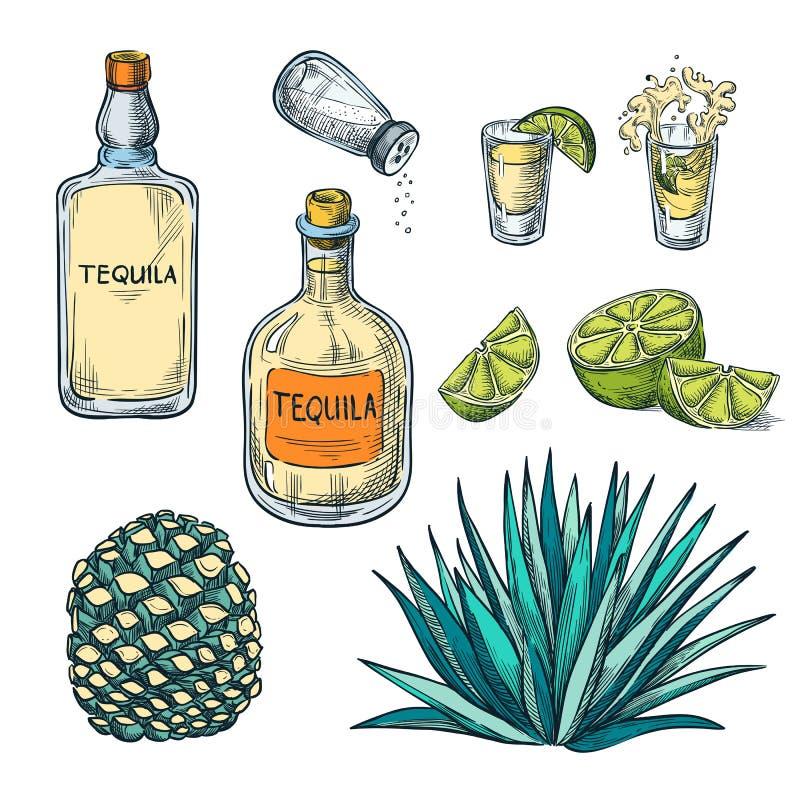 Tequilafles, geschotene glas en agavewortel, de vectorillustratie van de kleurenschets De Mexicaanse elementen van het het menuon vector illustratie
