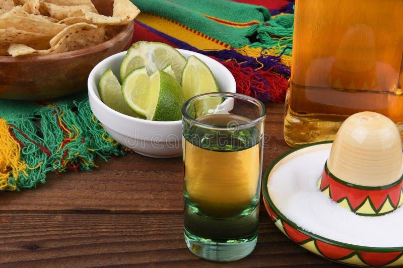 Tequilaskott arkivfoto