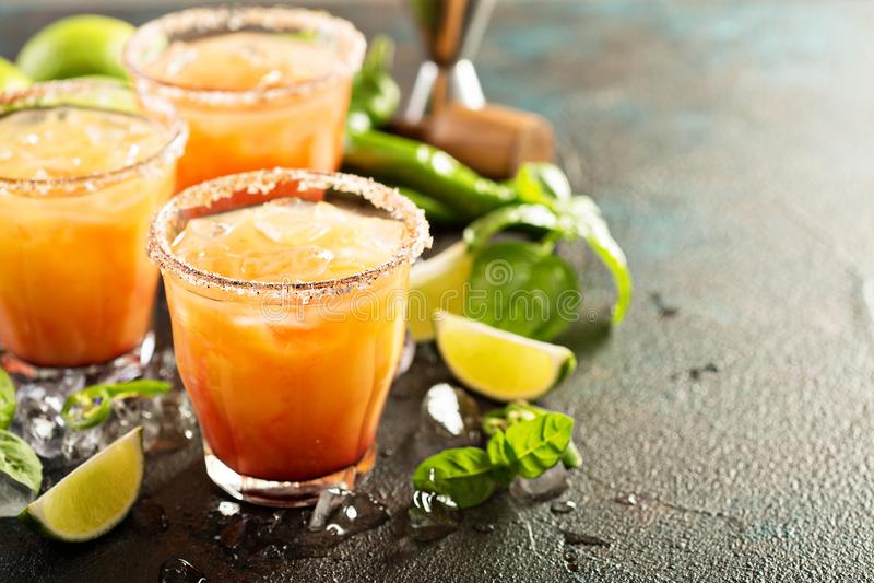 Tequilasoluppgångmargarita arkivbild