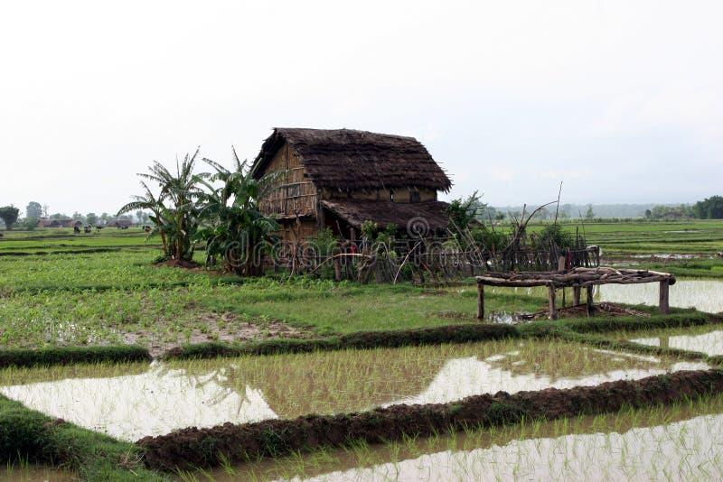 Terai wioska w Nepal fotografia stock