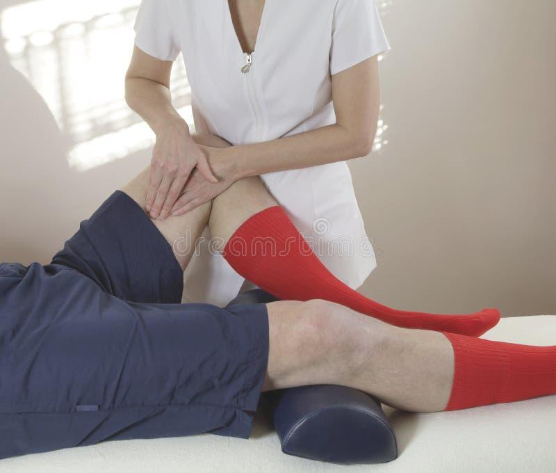Terapeuta que trabaja en el músculo interno del muslo fotos de archivo