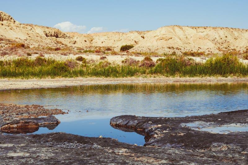 Terapeutisk gyttja i sjön fotografering för bildbyråer