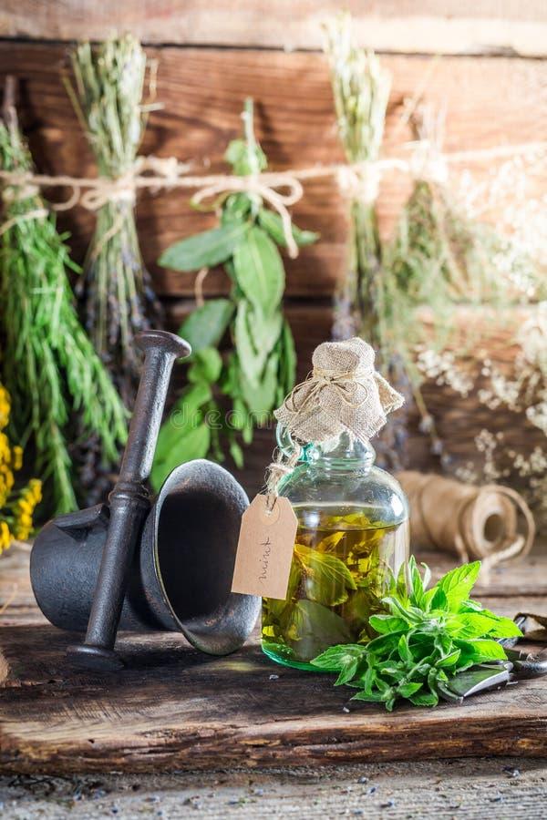 Terapeutiska örter i flaskor som naturlig medicin royaltyfri bild