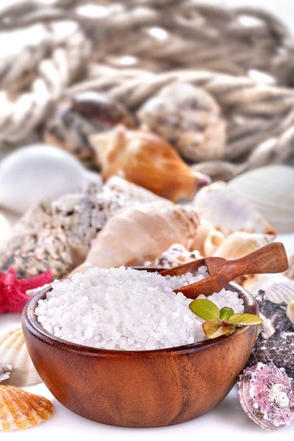 terapi för brunnsort för alternativ badhelthcareläkarundersökning salt royaltyfri fotografi