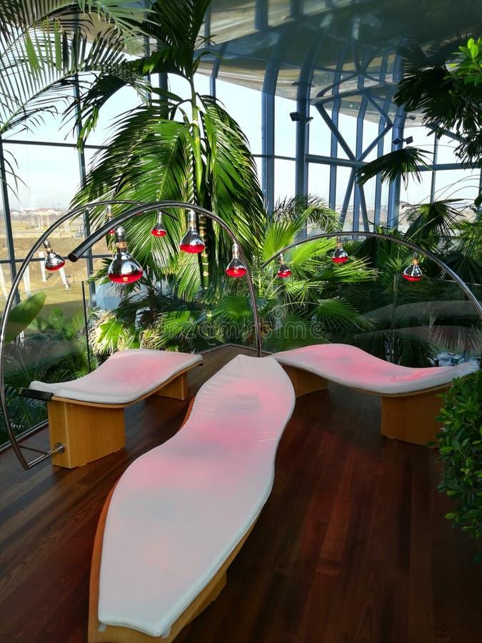 Terapi och palmträd för infrarött ljus arkivbilder