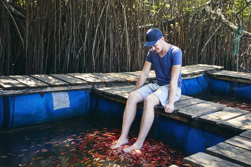 Terapia del balneario de los pescados y masaje naturales del pie imagen de archivo libre de regalías