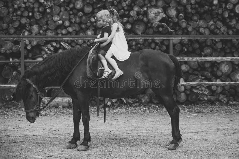 Terapia equina, concetto di ricreazione I bambini si siedono in sella del cavaliere sulla parte posteriore dell'animale immagine stock libera da diritti