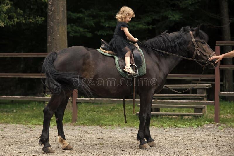 Terapia equina Paseo de la muchacha en caballo el día de verano imágenes de archivo libres de regalías