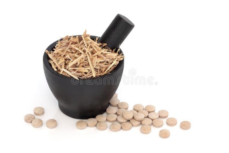 Terapia erval do Ginseng fotografia de stock