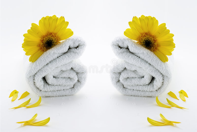 terapihanddukwellness royaltyfria bilder