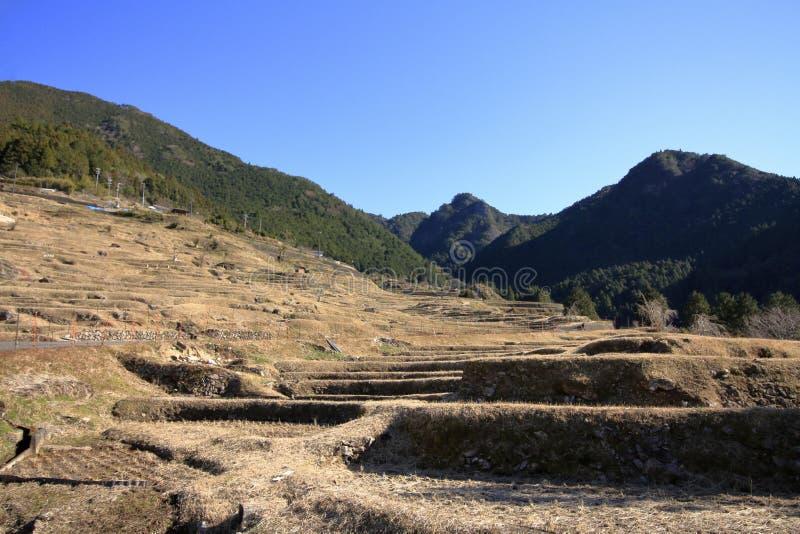 Terassenf?rmig angelegte Reisfelder Maruyama stockfotografie