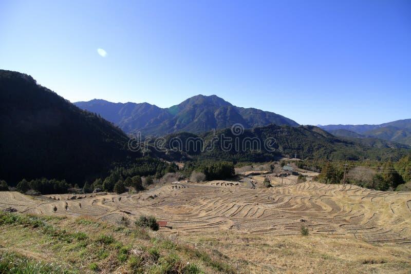 Terassenf?rmig angelegte Reisfelder Maruyama lizenzfreie stockbilder