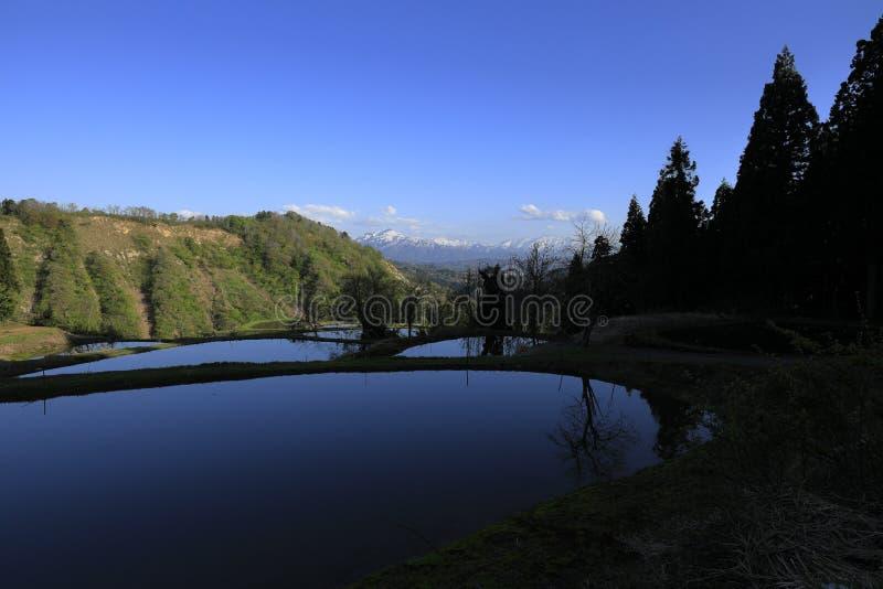 Terassenf?rmig angelegtes Reisfeld und Echigo-Berge lizenzfreies stockfoto