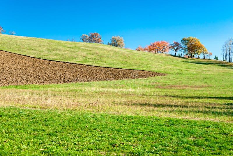 terenu chianti Italy krajobrazowy Tuscany zdjęcie royalty free