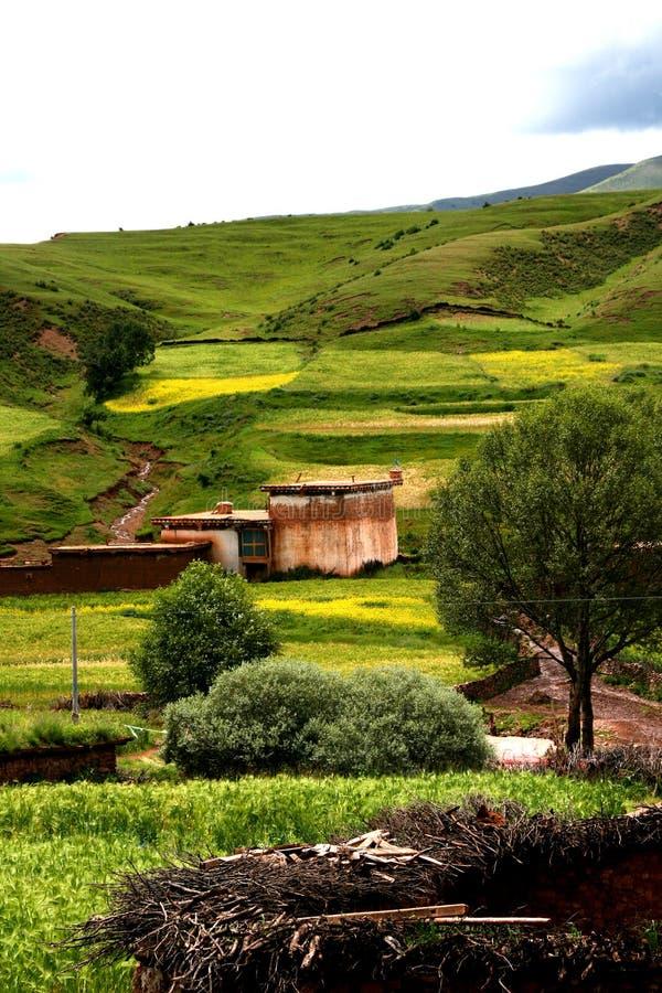 tereny wiejski s Tibet zdjęcie stock